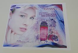 Знаме на крпа за банкноти печатени со печатач за еко растворувачи од 1,6 m (5 стапки) WER-ES160 4