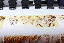 Самолеплив винил принуден од печатач за еко растворувачи од 1,8 m (6 стапки) WER-ES1802